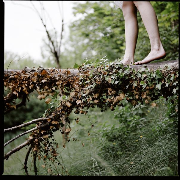 Marcher sur un tronc