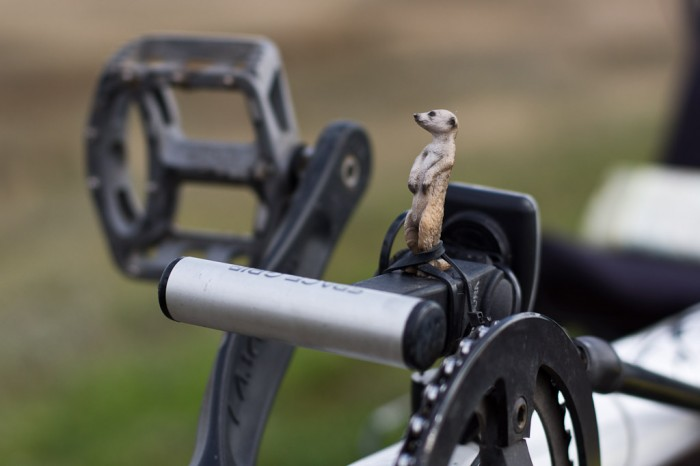 Les cyclistes anglais