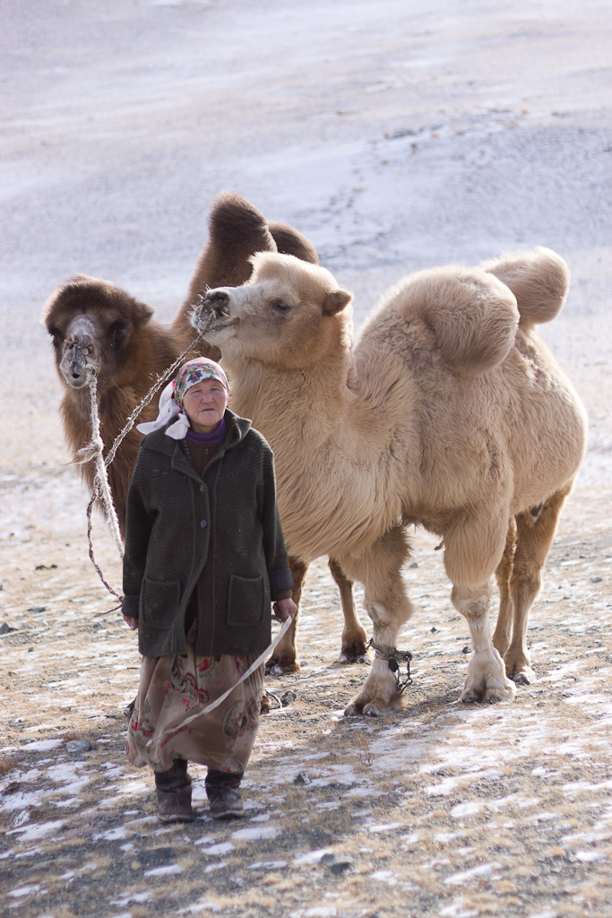 La dame aux chameaux
