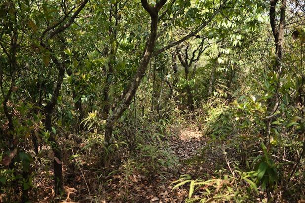 En route pour 3 jours dans la vallée de Pokara-2