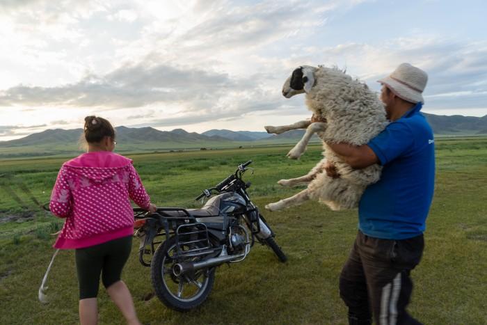Storytelling Mongol