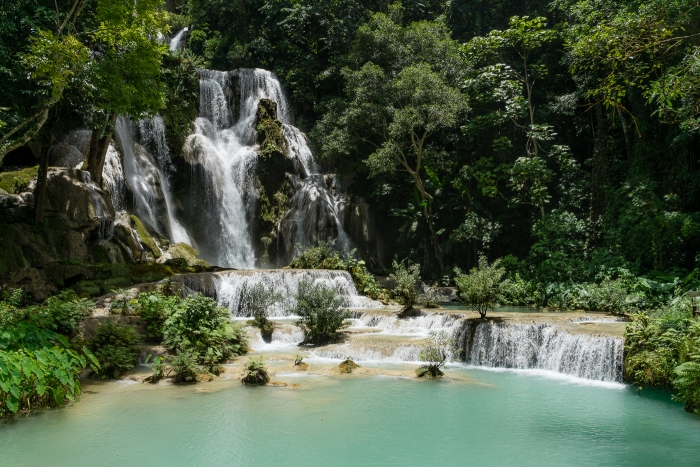 Kuang Si Falls and snake